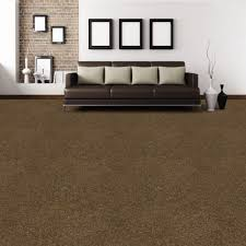brown carpet floor