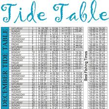 31 Qualified South African Tide Chart