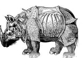 similiar black rhino diagram keywords black rhino labeled diagram also 1955 packard wiring diagram on black
