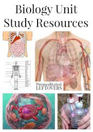 78 best Biology: Human Anatomy & Physiology images on Pinterest ...