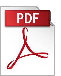 Bildergebnis für pdf symbol
