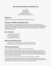 Chemical Engineering Resume Format Sample Overview For Resume