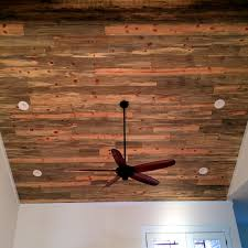 blue stain pine ceiling our beetle kill pine is salvaged