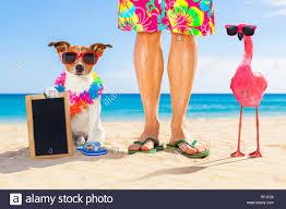 Breeders beach gay couples