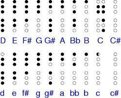 Key Flute Finger Chart Windpony Flute A Key Chords Chart Yahoo Image Search