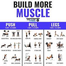 how can i build muscle lose fat at
