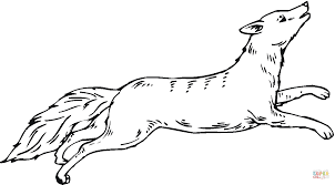Small Picture Coyote run coloring page Free Printable Coloring Pages