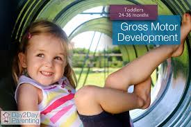 gross motor activities for toddlers