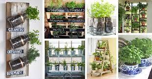 25 best herb garden ideas and designs