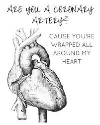 Medical Quotes Delectable Anatomy Heart Jokes The 48 Best Medical Quotes Ideas On Pinterest