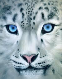 leopard painting behind blue eyes by b k lusk