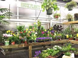 vermont business employee owned and burlington based gardener s supply company has opened its newest garden center in lebanon nh