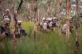 u s department of defense photo essay u s marines patrol the shoalwater bay training area in queensland 16