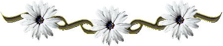 Znalezione obrazy dla zapytania poziome kwiaty gify