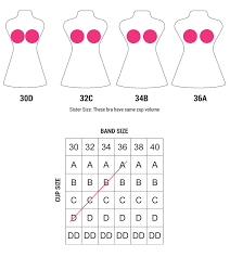 Bra Size And Cup Size Chart Bra Sister Sizes Chart Sister Cup Sizes Chart Sisterhood