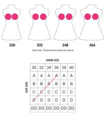 Bra Sister Sizes Chart Sister Cup Sizes Chart Sisterhood