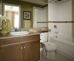 bathroom mildew removal how to get