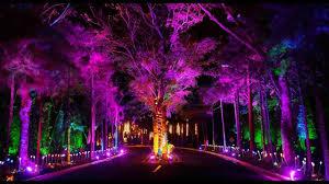 Crosswinds Tagaytay Lights