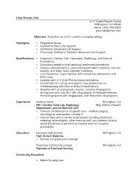 Nurse Resume Example Simple Resume Example For Nurses Resume Example Nurse Nurse Practitioner