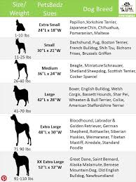Rottweiler Size Chart Pin By Sena Lekwa On For The Love Of Pets Dog Size Chart