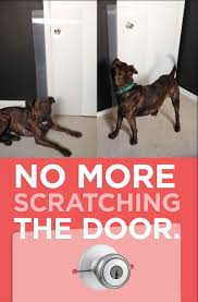 Train your dog to stop scratching the door. Clawguard protects door ...