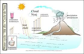 Educa Vision Inc Water Cycle Chart