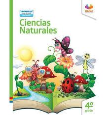 Libro de texto en formato pdf paginas: Ciencias Naturales Maya Educacion