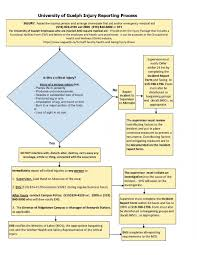 Reporting Flow Chart Template Near Miss Reporting Form Template Lovely Incident