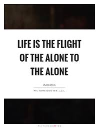 Flight Quotes Stunning Life Is The Flight Of The Alone To The Alone Picture Quotes