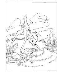 Bambi Kijkt In Het Spiegelende Water Kleurplaat Jouwkleurplaten