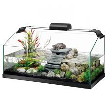 small turtle aquarium ideas best accent chairs and
