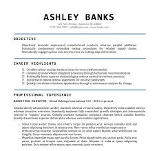 Templates For Resumes Word Beauteous Sample Resume Word Doc Earpodco
