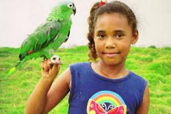 parrots for kids. Exellent Kids Parrots U0026 Kidu0027s Intended For Kids F