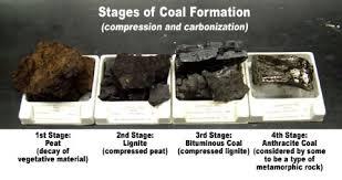 Coal Types Of Coal Peat Lignite Bituminous Coal