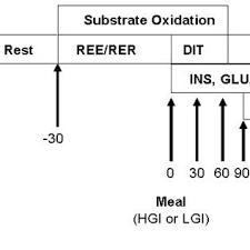 Rer Chart Flow Chart Of Experimental Design Resting Energy