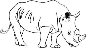 Coloring Pages Of Wild Animals Coloring Pages Of Rhinoceros Wild