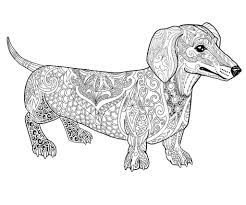 Dachshund Coloring Pages Quality Dog Linear Free Printable