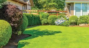 Lawn Care Services Affordable Lawn Maintenance Senske