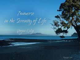 Nature Serenity Quote