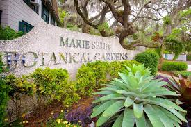 marie selby botanical garden in sarasota photo of the main entrance to the park