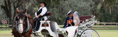 wedding bells are ringing at our scenic ocala hotel
