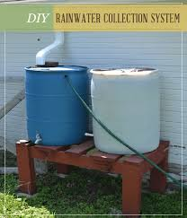 diy rainwater collection system for homesteaders