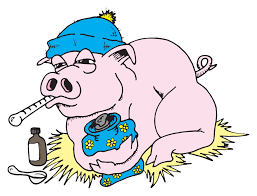 swine flu essay combat swine flu by going vegan stuff in the stuff in the basement honestly i felt as if we d rolled the car a half