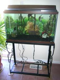 office aquarium. Office Aquarium. Fish Aquarium Tank For Full Size Of And Stand