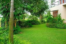 Small Picture House of Green Completed Gardens jayavi 1 42 Garden Designing