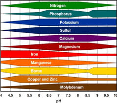 Macronutrient Chart Source Balance Chart Of Micro And Macronutrient To Fight