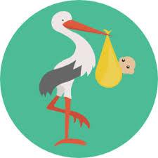 2020 Correct Chinese Baby Calendar Revised By Master Tsai
