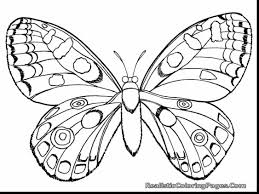 remarkable ladybug coloring page with bug coloring pages ...