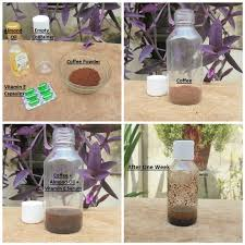 Lauric acid is potent in antimicrobial properties. Homemade Caffeine Eye Serum To Treat Dark Circles And Wrinkles