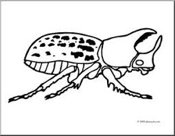 Small Picture Clip Art Insects Rhinoceros Beetle coloring page I abcteach